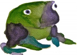 Frog_1